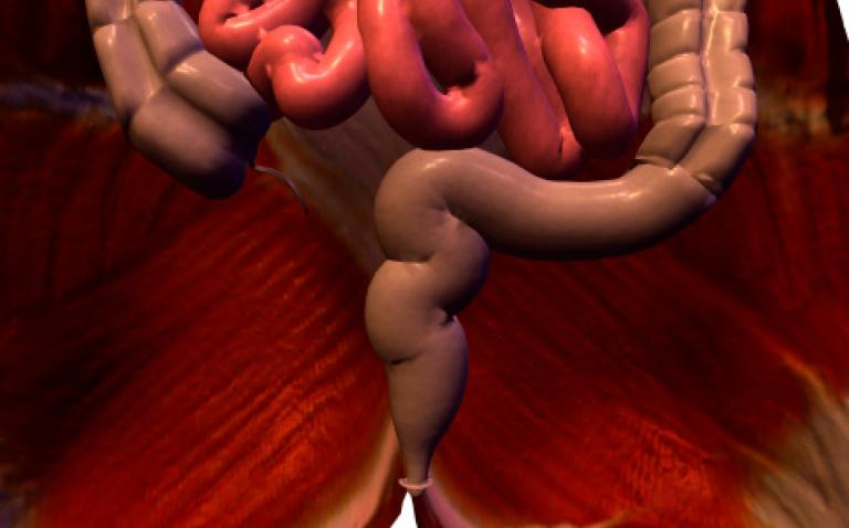 New report the burden of constipation in our ageing population'