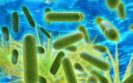 Legionnaires' disease Approved Code of Practice
