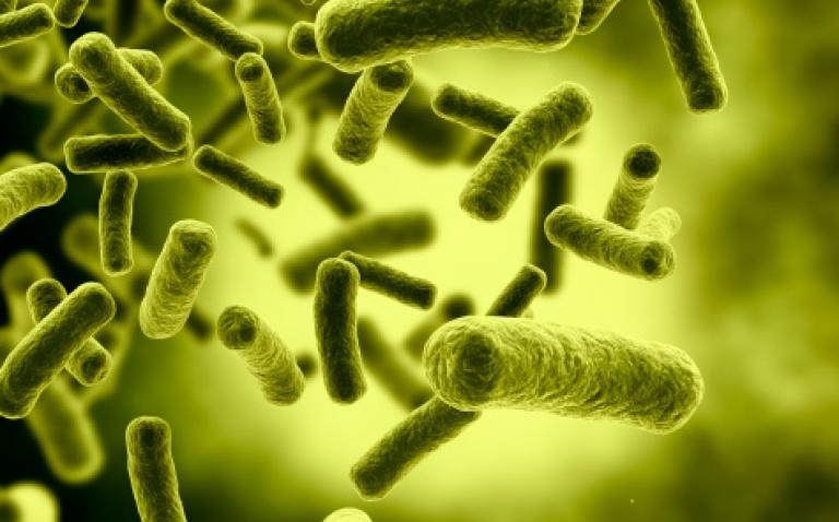 World Health Organisation (WHO) joins with ESCMID to fight global infections