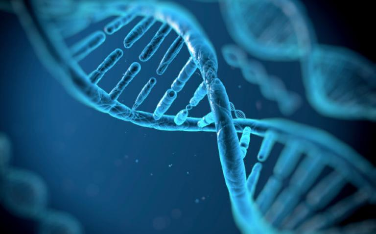 Oxford starts on biggest ever genetic recruitment project