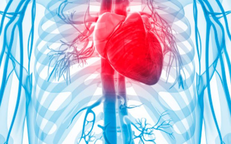 A healthy environment can prevent heart disease