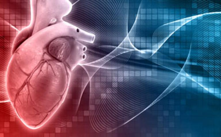 Pioneering new technique could boost understanding of causes of heart disease