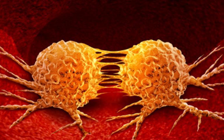 European Commission approves BRAFTOVI and MEKTOVI to treat advanced BRAF-mutant melanoma