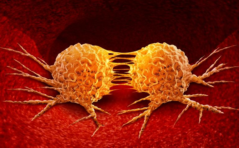 Lynparza approved in EU for germline BRCA-mutated HER2-negative metastatic breast cancer