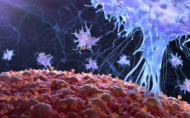 New strategy of reprogramming regulatory T cells may improve cancer therapies