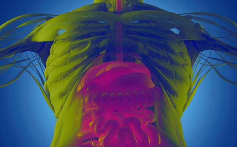 Expert view: JAK inhibitors in ulcerative colitis – raising an alert