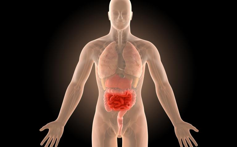 Researchers identify potential treatment target for Crohn's disease