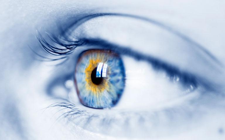 retinal imaging in type 1 diabetes