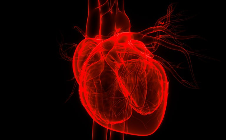 heart failure and cancer risk