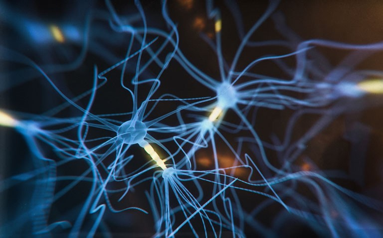 Cognitive decline and tau protein in Alzheimer's